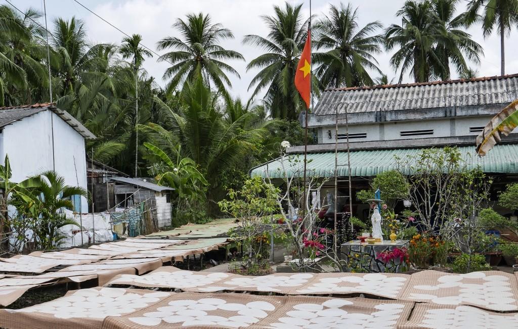 Riisipaberite valmistamine lõpeb nende laiali laotamise ja kuivatamisega.