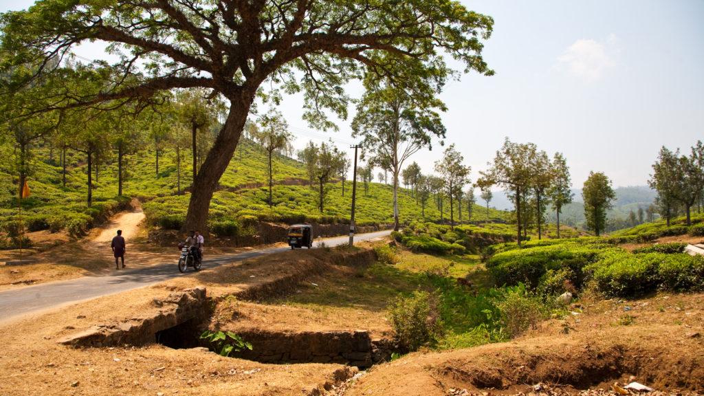 india20100304113536